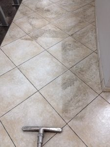 Scrub & Extraction of Ceramic Tile